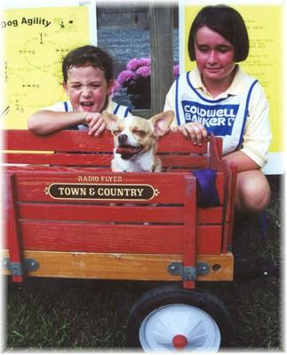 cartdog2000